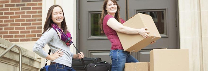 cartons de déménagement ?