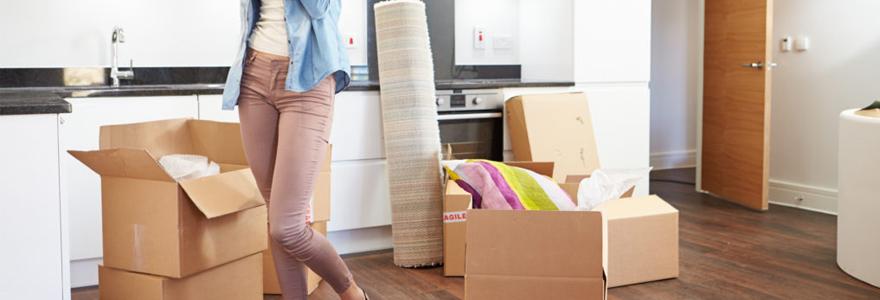 utilitaire avec chauffeur,déménagement, transport de meubles